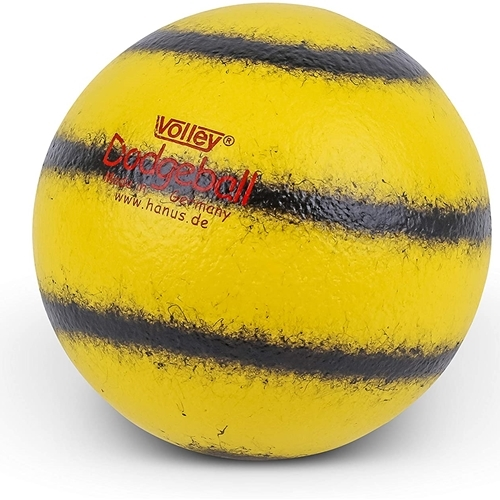 Dodgeball Volley®